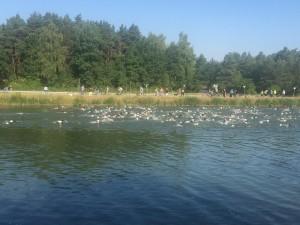 Triathlon Erlangen